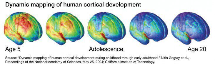 Desarrollo cognitivo en la adolescencia: por qué es importante saber cómo funciona la mente de su hijo